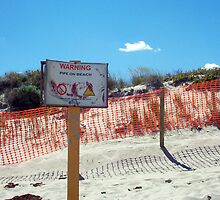 Beach Sign 05 10 12 by Robert Phillips