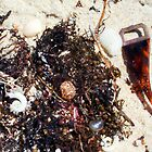 Beach Jumble  by Robert Phillips