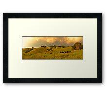 Mt Eccles farm, South Gippsland - December 2011 Framed Print