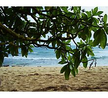 Ocean View Interrupted Photographic Print