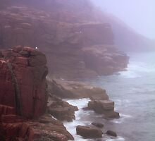 Rugged Seacoast in White Mist by Roupen  Baker