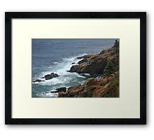 Sentinel Pine above the Atlantic Ocean Framed Print