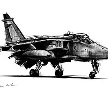 Jaguar Fighter Bomber Jet by olivercook