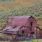 Rustic Barn - Blacks Creek Idaho by CADavis