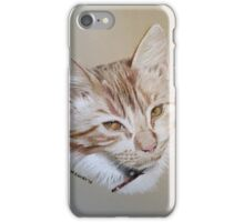 Joe the beautiful cat iPhone Case/Skin