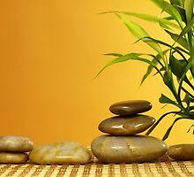 Zen by photoshot44