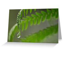 Macro water droplet. Greeting Card