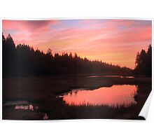 Salt Marsh at Dawn Poster