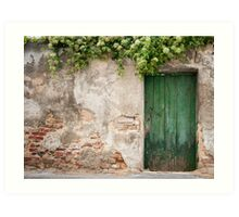 Krems: The Green Door Art Print