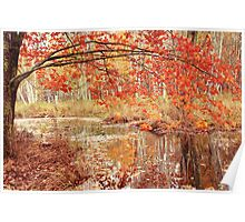 Oak Branch over Autumn Stream  Poster