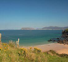 Fanad Coast by Adrian McGlynn