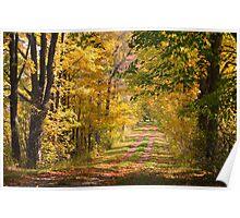 autumn lane.. Poster