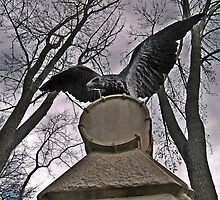 The Eagle and The Drum by Jane Neill-Hancock
