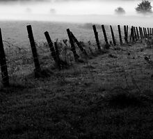 Mist in the morning by davrberts