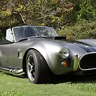 AC Shelby Cobra by bubblenjb