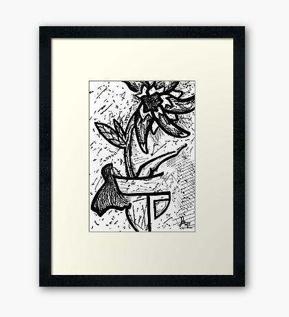 019 Framed Print