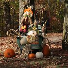 Wonderful Country Fall Display! by AliceMc
