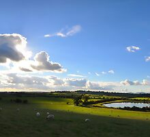 The Malverns from near Tewkesbury by Nick  Gill