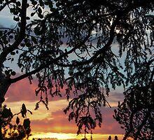 serenity by rgarduno