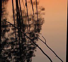 May Reflection by ArtOfE