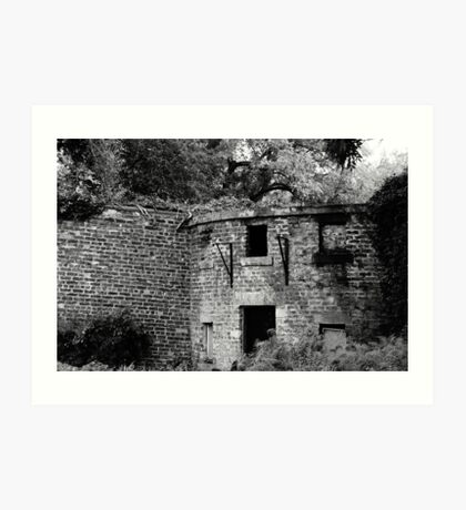 Abandoned Abode Art Print