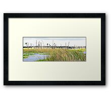 Wetlands landscape Framed Print