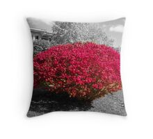 Colorized Burning Bush Throw Pillow