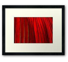 Red Folds Framed Print