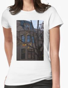 Washington, DC Facades - Dupont Circle Neighborhood  Womens Fitted T-Shirt