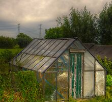 The Glass house by Nicole W.