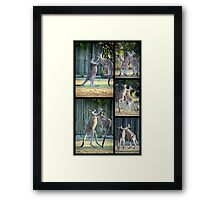 Boxing Kangaroos at Woodgate Beach Framed Print
