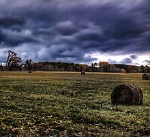 Autumn Harvest 2 by Thomas Young