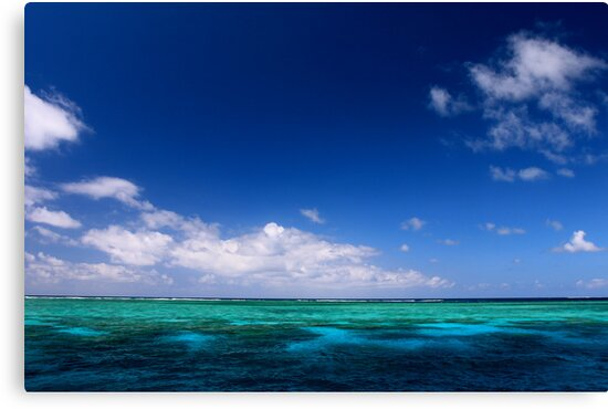 MCC Great Barrier Reef by Mossman  Community Centre