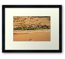 MCC Natures Window Framed Print