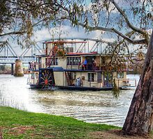 A River Cruise - Captain Proud, Murray Bridge, Murraylands by Mark Richards