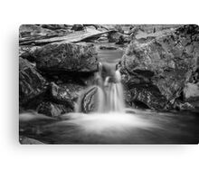 Watered Gorge Canvas Print
