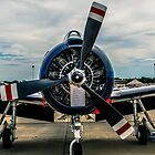 Indianapolis Air Show by Drew Robinson