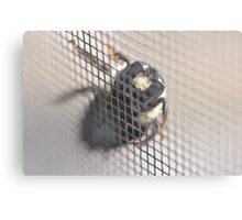 Bumble Screened Out Canvas Print