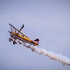 On Wing Stunt by Drew Robinson
