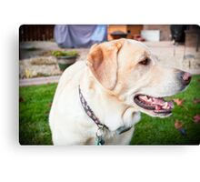 The Puppy Pose Canvas Print