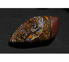 Opal Cocoon  Photographic Print