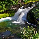Paradise Creek Waterfall by Marcus Angeline