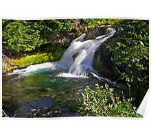 Paradise Creek Waterfall Poster