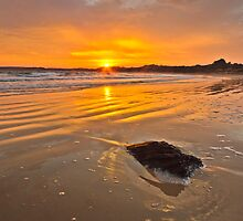 Golden Light of Dawn by fotosic