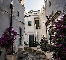 old town, Ostuni by gielle