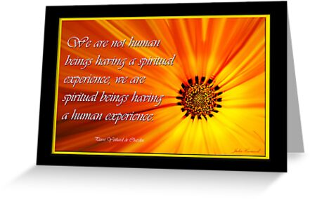 We are not humans having a spiritual experience by Julia Harwood