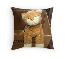 Who Can Resist This Face? [Display at Boyd's Bear Store] Throw Pillow