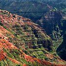 Waimea Canyon by ZWC Photography