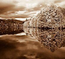 Autumn tones by Sam Smith