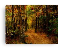 Autumn glow.. Canvas Print